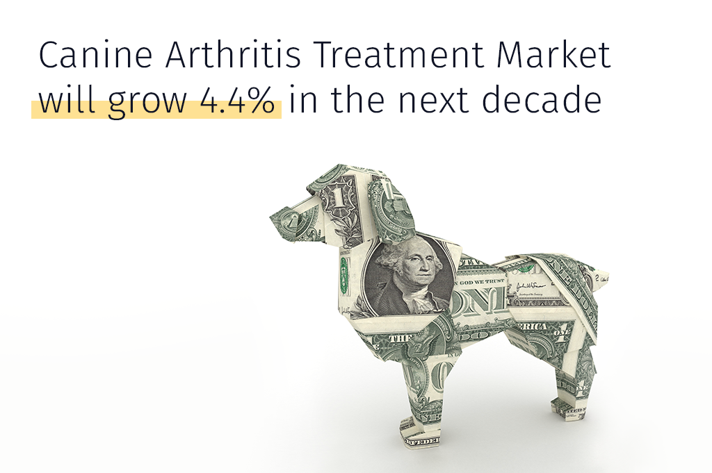 Medrego Canine Arthritis Treatment Growth in next decade