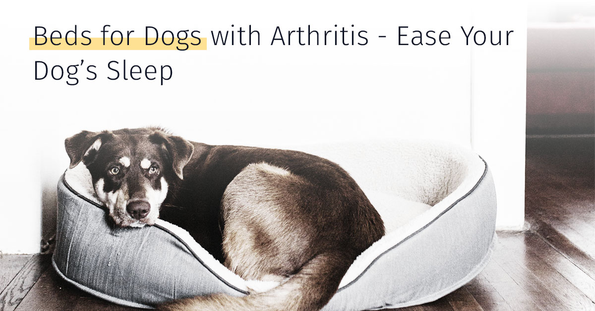 Beds For Dogs With Arthritis Top Bedding For Arthritic