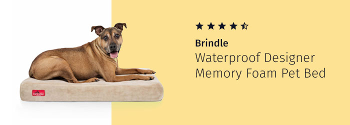 Brindle Waterproof Designer Memory Foam Pet Bed, canine arthritis treatment therapy