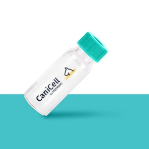 Medrego CaniCell product. Dog Stem Cell Therapy. Canine Arthritis.