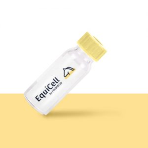 Medrego EquiCell product. Horse Stem Cell Therapy. Horse Lingament injuries